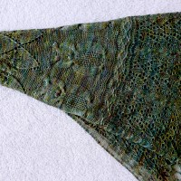 Into the Woods shawl.