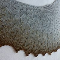 Freckled Bluebird in Winter shawl