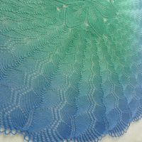 In the Store: Where the Forest Meets the Sea shawl