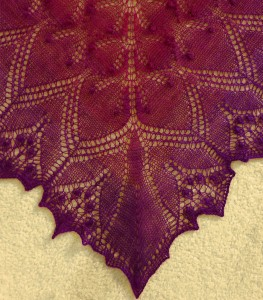 Pirate Shawl